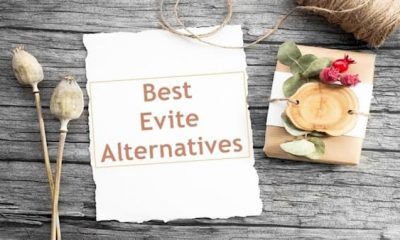 Elite Alternatives